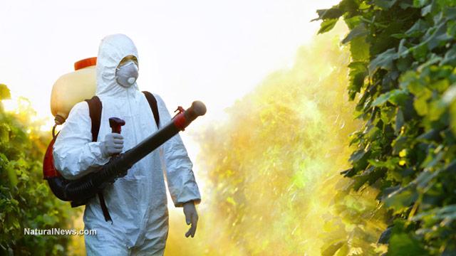 Spray Paint Environmental Impact